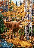 گوزنها و جنگل پاییزی