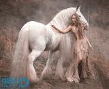 رویای اسب سفید